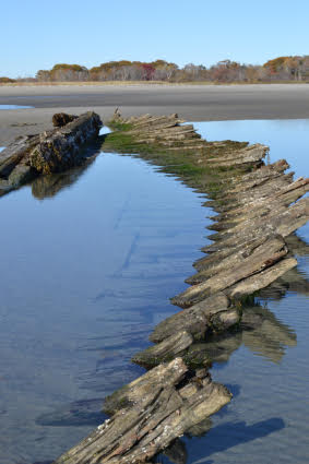Wrecks in the Sand: The Potential Relationship Between Beached Shipwrecks and Climate Change
